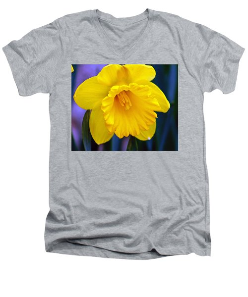 Men's V-Neck T-Shirt featuring the photograph Yellow Spring Daffodil by Kay Novy
