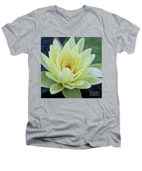 Yellow Water Lily Nymphaea Men's V-Neck T-Shirt