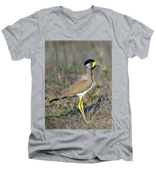 Yellow-wattled Lapwing Vanellus Men's V-Neck T-Shirt by Panoramic Images