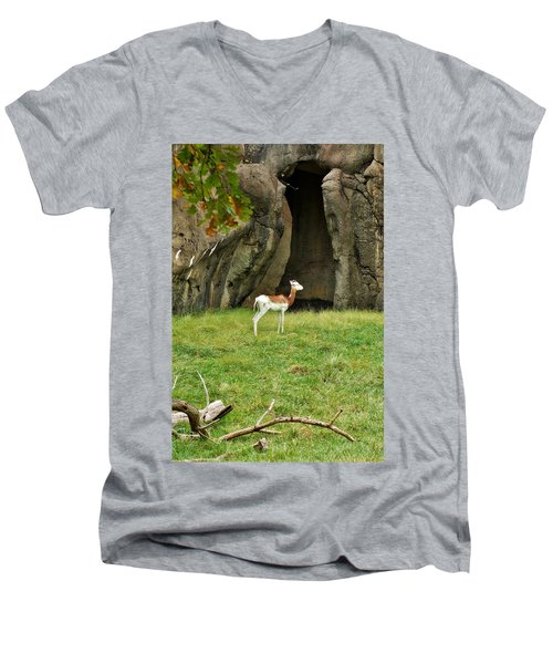 Men's V-Neck T-Shirt featuring the photograph Young Addra Gazelle by Jean Goodwin Brooks