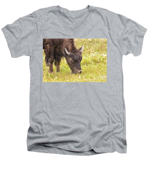 Men's V-Neck T-Shirt featuring the photograph Young Bison by Belinda Greb