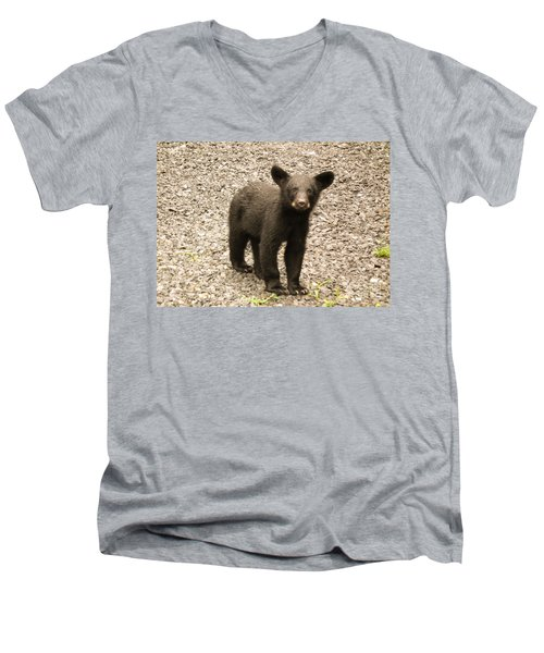 Young Cub Men's V-Neck T-Shirt