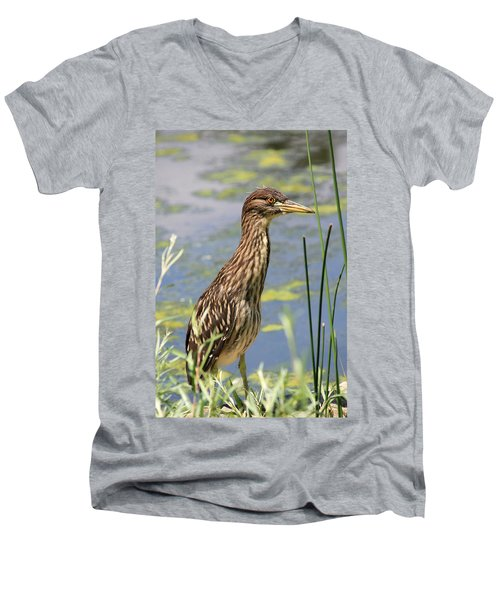 Young Heron Men's V-Neck T-Shirt