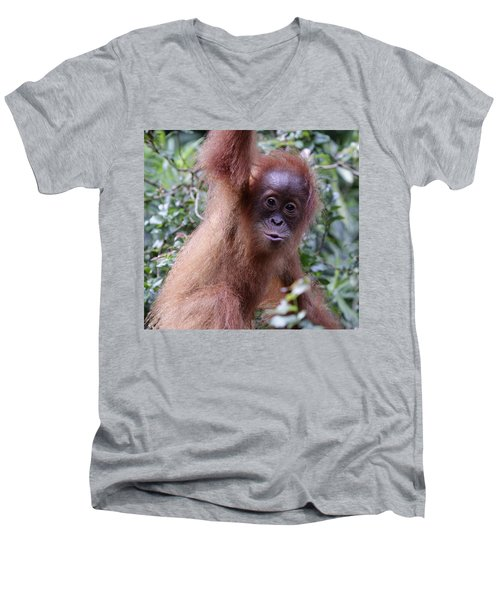 Men's V-Neck T-Shirt featuring the pyrography Young Orangutan Kiss by Shoal Hollingsworth