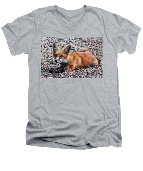 Men's V-Neck T-Shirt featuring the photograph Young Red Fox Watches Squirrel by Diane Alexander