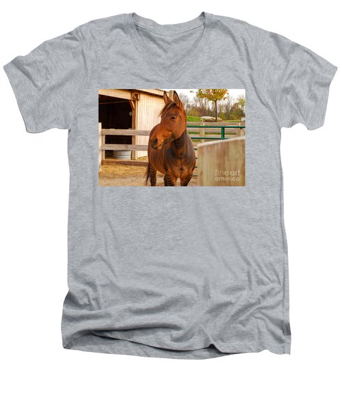Zorse Men's V-Neck T-Shirt