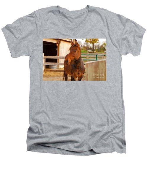 Zorse Men's V-Neck T-Shirt by Mary Carol Story