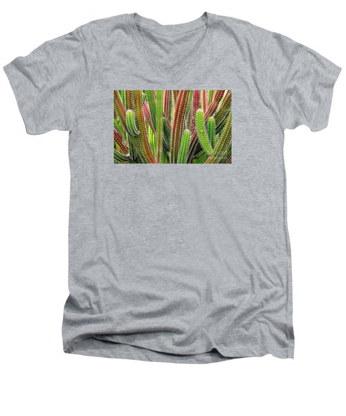 Men's V-Neck T-Shirt featuring the photograph Cactus by Ranjini Kandasamy