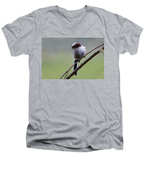 Long Tailed Tit Men's V-Neck T-Shirt