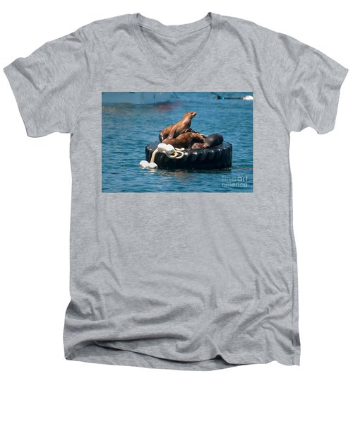 Monterey Harbour Men's V-Neck T-Shirt
