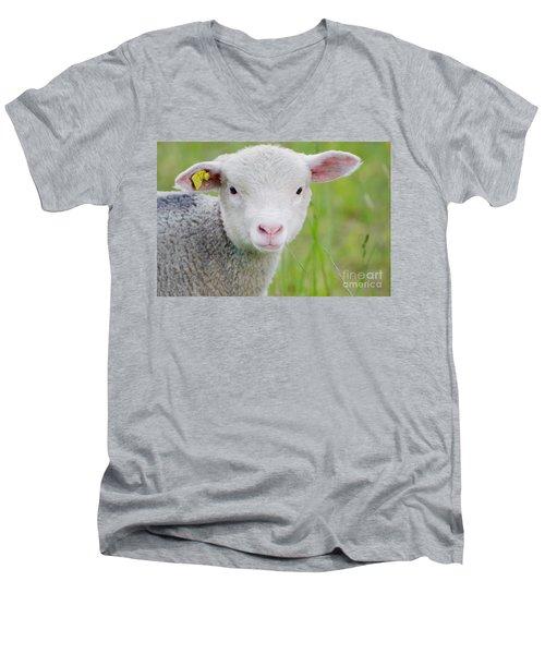 Young Sheep Men's V-Neck T-Shirt