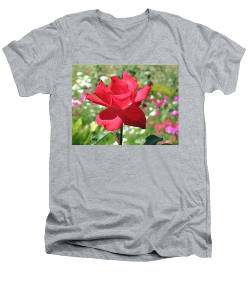 A Beautiful Red Flower Growing At Home Men's V-Neck T-Shirt by Ashish Agarwal