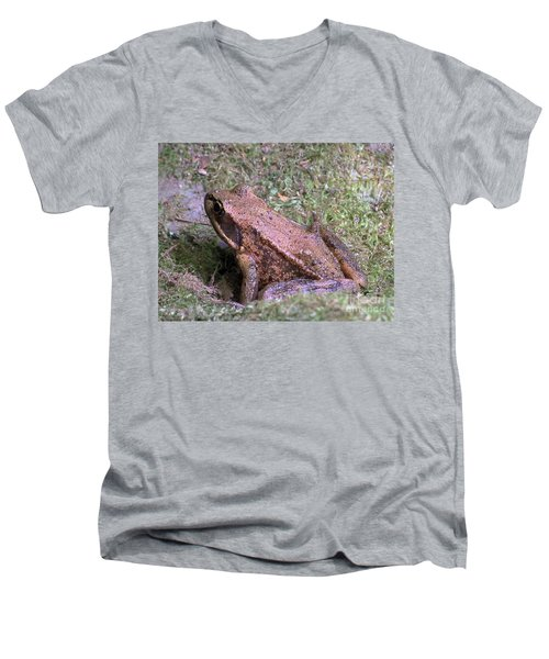 Men's V-Neck T-Shirt featuring the photograph A Friendly Frog by Chalet Roome-Rigdon