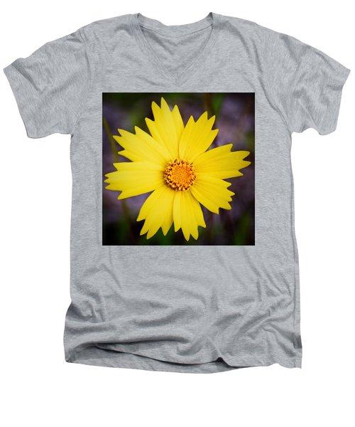 A Little Sunshine Men's V-Neck T-Shirt