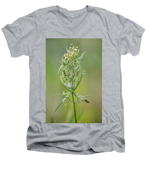 Men's V-Neck T-Shirt featuring the photograph A Meal Of Lace by JD Grimes