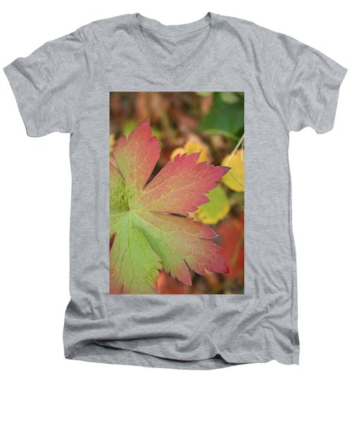 A Touch Of Fall Men's V-Neck T-Shirt