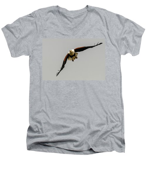 African Fish Eagle Men's V-Neck T-Shirt