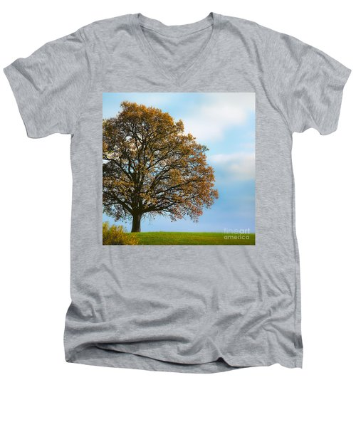 Alone On The Hill Men's V-Neck T-Shirt