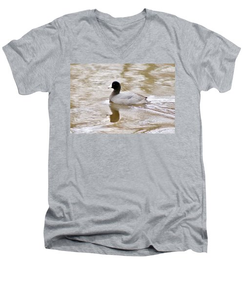 American Coot 1 Men's V-Neck T-Shirt by Joe Faherty