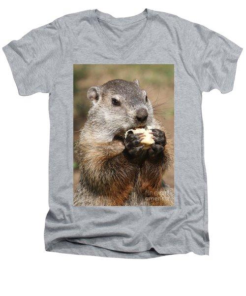 Animal - Woodchuck - Eating Men's V-Neck T-Shirt