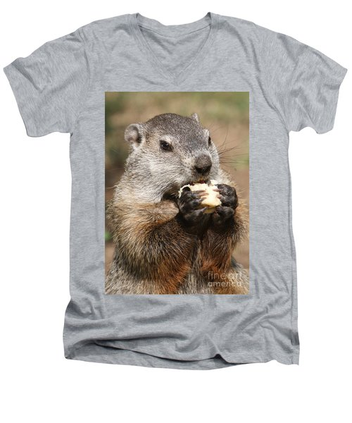 Animal - Woodchuck - Eating Men's V-Neck T-Shirt by Paul Ward