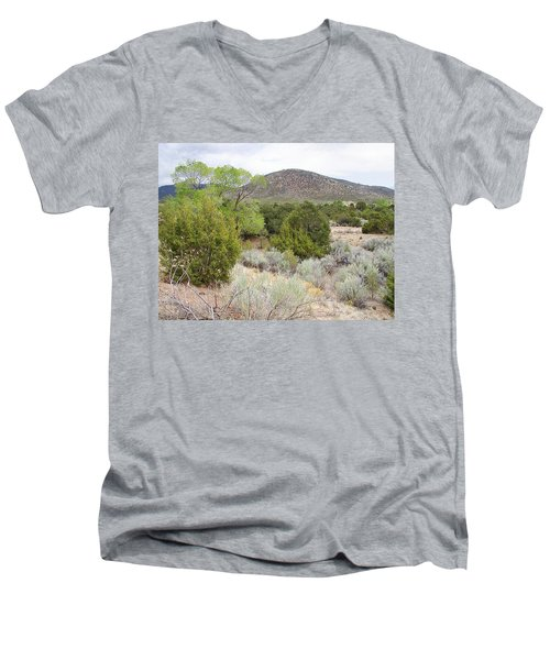 April New Mexico Desert Men's V-Neck T-Shirt