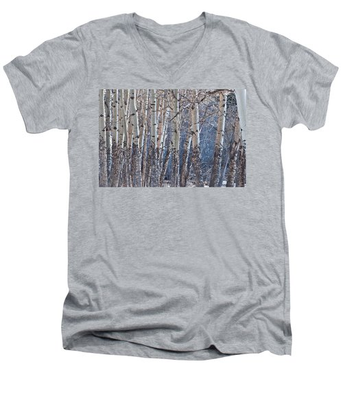 Men's V-Neck T-Shirt featuring the photograph Aspen Grove by Colleen Coccia