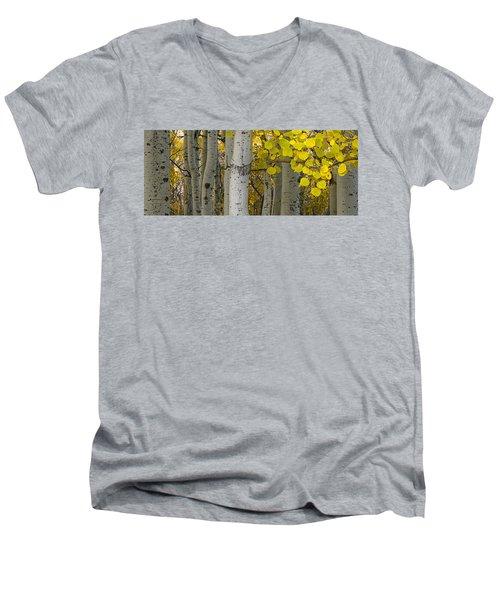 Aspen Panorama Men's V-Neck T-Shirt