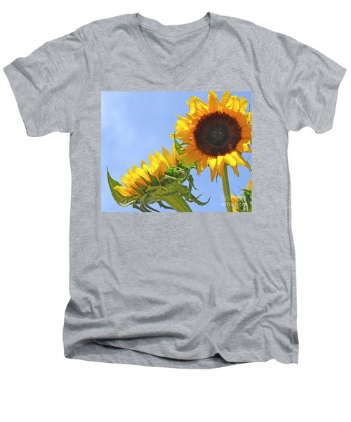 August Sunshine Men's V-Neck T-Shirt