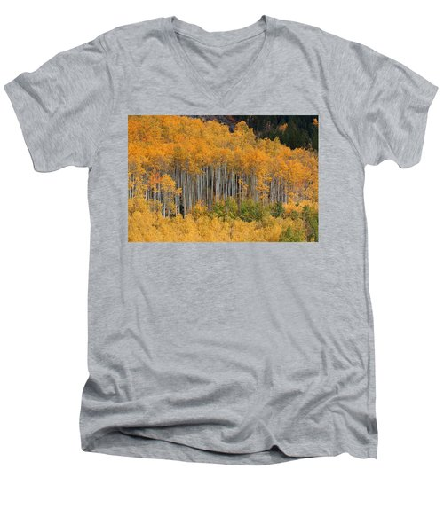 Men's V-Neck T-Shirt featuring the photograph Autumn Curtain by Jim Garrison