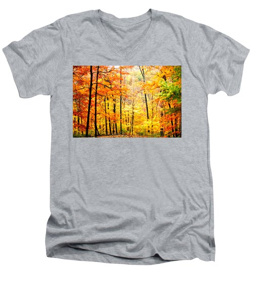Men's V-Neck T-Shirt featuring the photograph Autumn Forest by Randall Branham