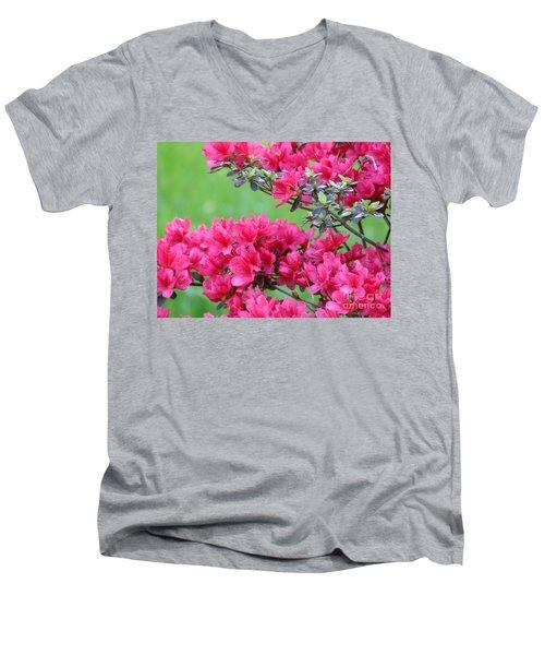 Men's V-Neck T-Shirt featuring the photograph Azalea by Andrea Anderegg