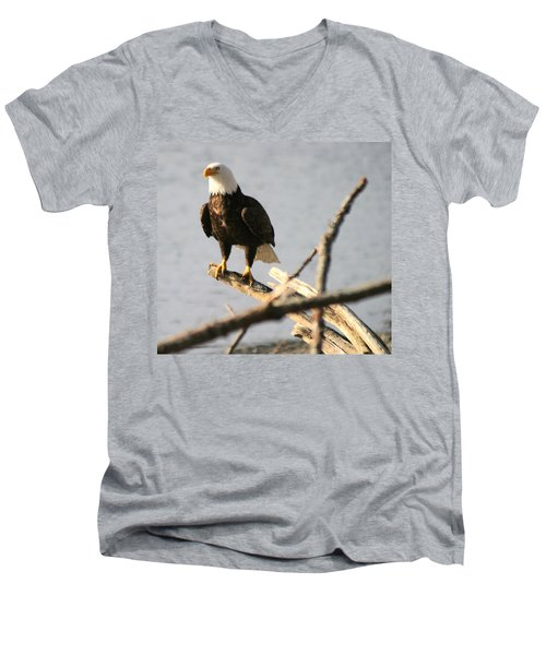 Men's V-Neck T-Shirt featuring the photograph Bald Eagle On Driftwood by Kym Backland