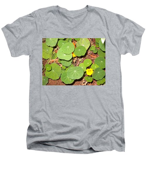 Beautiful Round Green Leaves Of A Plant With Orange Flowers Men's V-Neck T-Shirt