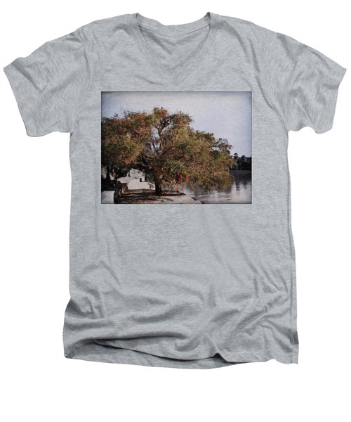 Beauty On The Path Men's V-Neck T-Shirt