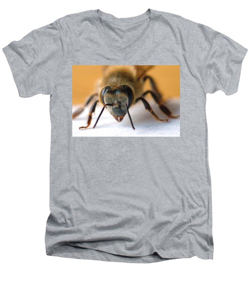 Bee In Macro 4 Men's V-Neck T-Shirt by Micah May