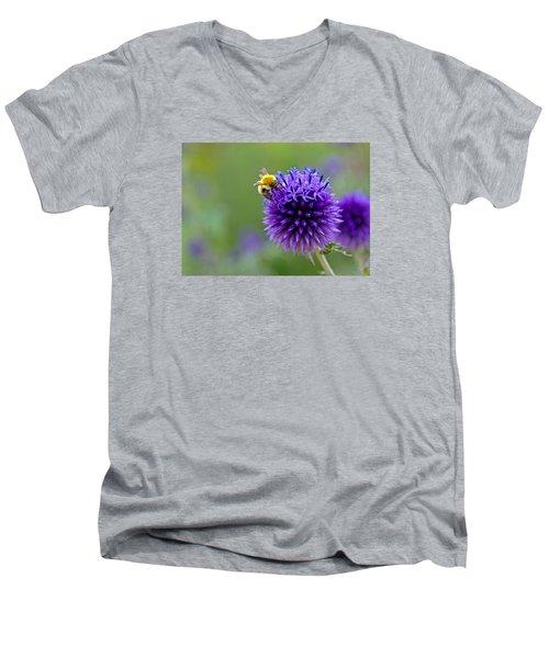 Bee On Garden Flower Men's V-Neck T-Shirt