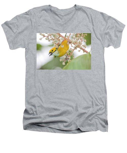 Bird With Berry Men's V-Neck T-Shirt
