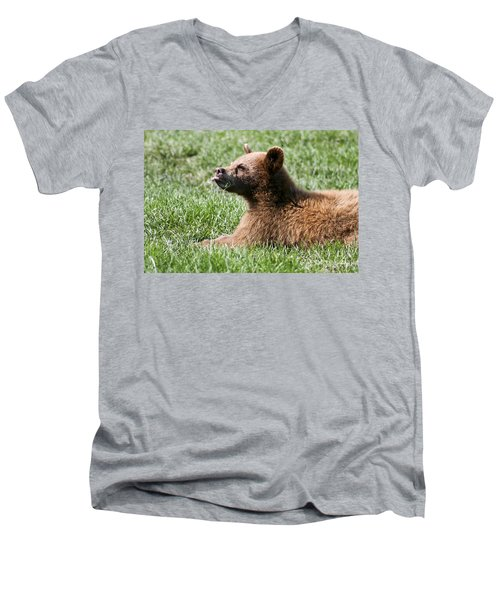 Black Bear Cub I Men's V-Neck T-Shirt