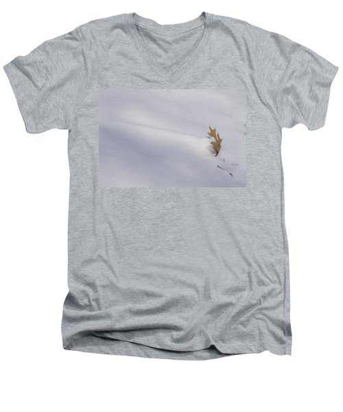Blown Snow And Oak Leaf Men's V-Neck T-Shirt