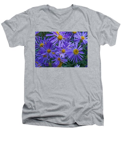 Blue Asters Men's V-Neck T-Shirt