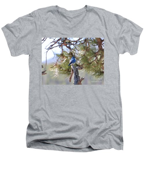 Blue Boy Men's V-Neck T-Shirt