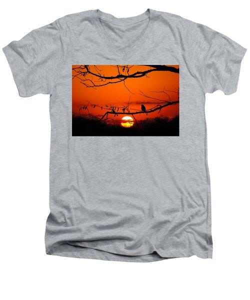 Bluebird Dawn Men's V-Neck T-Shirt