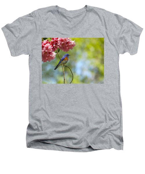 Bluebird In Cherry Tree Men's V-Neck T-Shirt