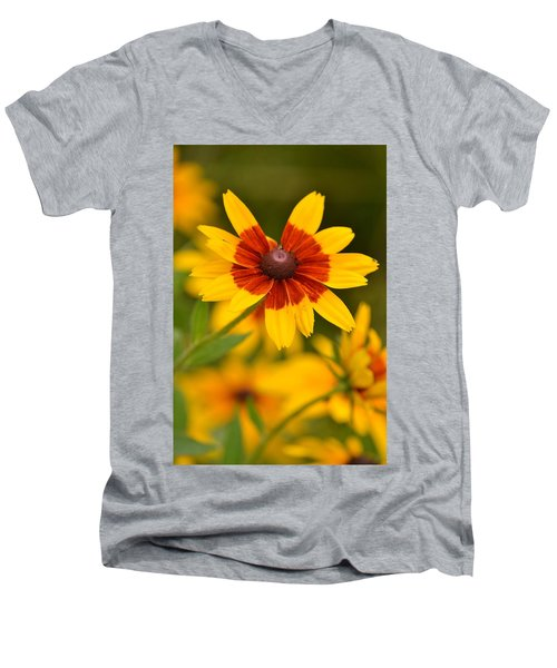 Men's V-Neck T-Shirt featuring the photograph Blush-eyed Susan by JD Grimes