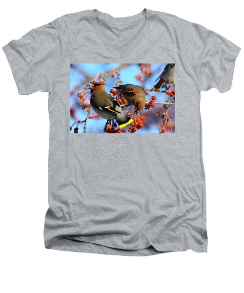 Bohemian Waxwings Men's V-Neck T-Shirt