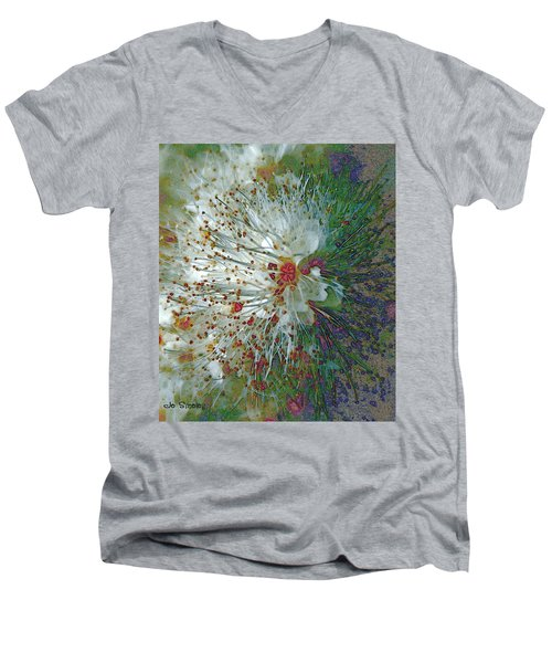 Bouquet Of Snowflakes Men's V-Neck T-Shirt