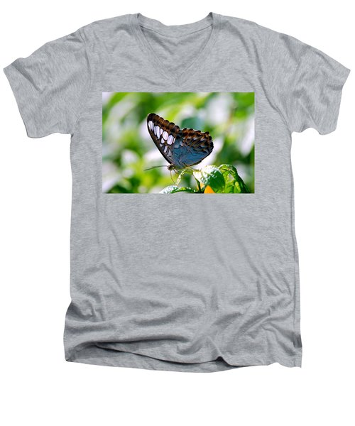 Men's V-Neck T-Shirt featuring the photograph Bright Blue Butterfly by Peggy Franz