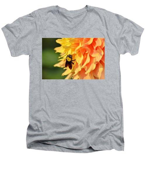 Bumblebee Men's V-Neck T-Shirt
