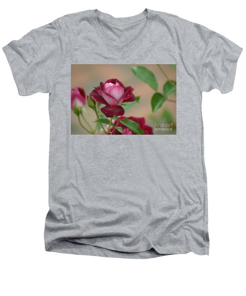 Men's V-Neck T-Shirt featuring the photograph Burgundy Iceberg by Living Color Photography Lorraine Lynch